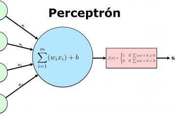 Modelo Perceptron